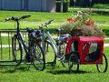 Fahrrad Anhängerkupplung: Test & Empfehlungen (09/20)
