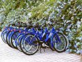 Fahrradständer: Test & Empfehlungen (04/21)