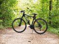 Trekkingrad: Test & Empfehlungen (04/21)