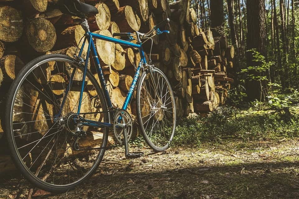 Rennrad im Wald
